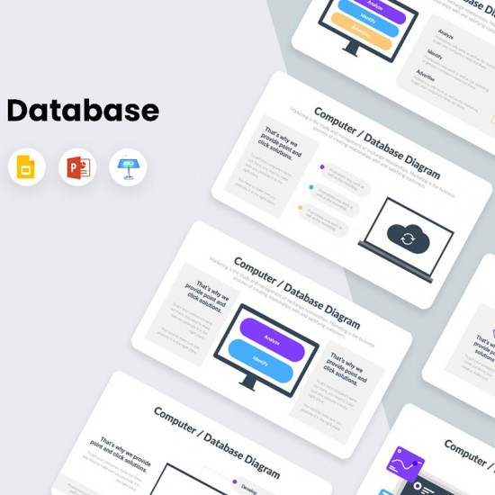 Computer and Database Infographics