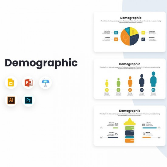 Demographic Diagrams Infographics