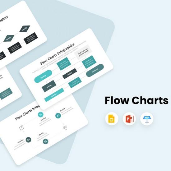 Flow Charts Infographics