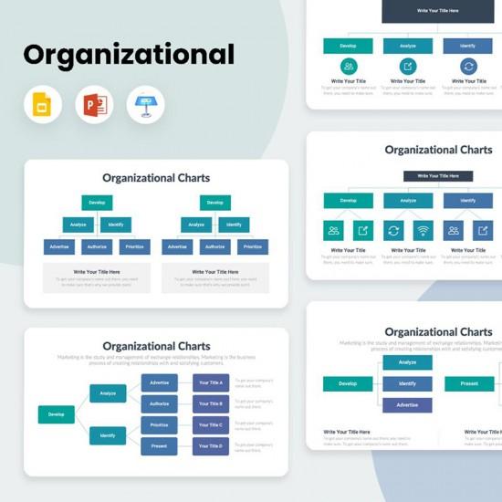 Organizational Charts Diagrams Infographics