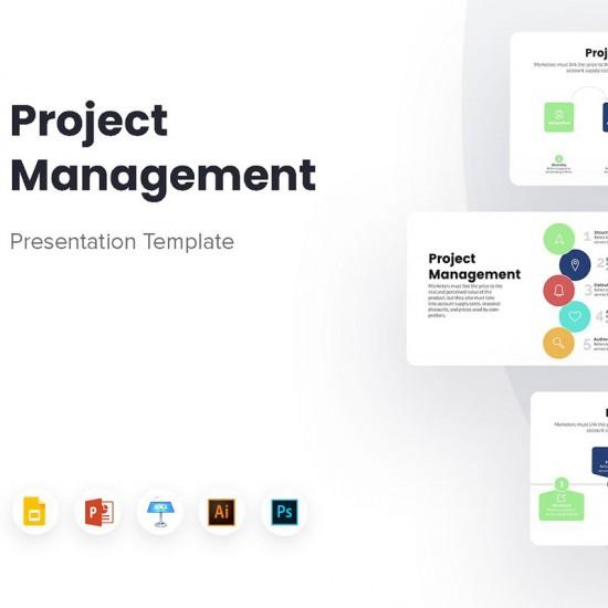 Project Management Infographics