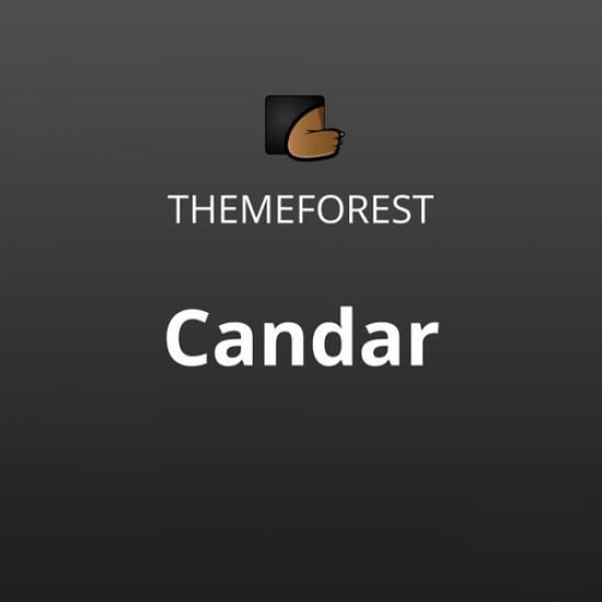 Candar Freelancers Agencies Responsive Theme