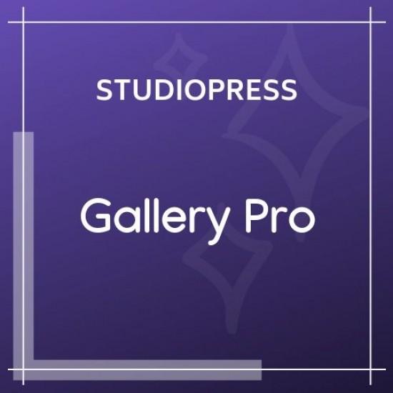 Gallery Pro Theme 1.2.0