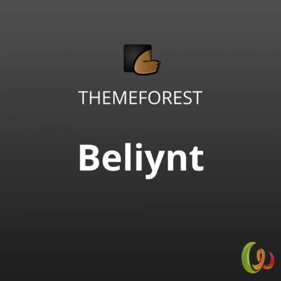 Beliynt Modern Multi-Conceptual Portfolio