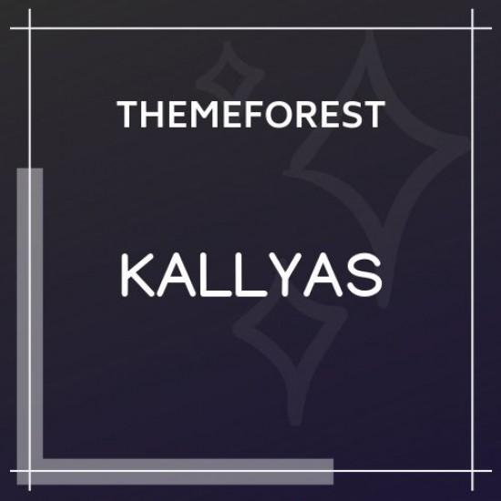 KALLYAS Creative eCommerce WordPress Theme