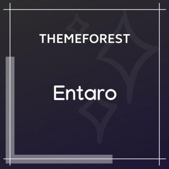 Entaro Job Portal WordPress Theme 3.6